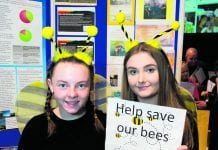Young Environmentalist Awards Showcase Innovative Projects