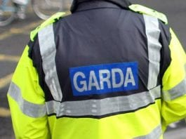 A man and a woman have been arrested following a burglary incident in Terenure