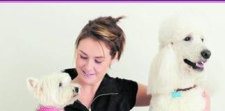 Award-winning dog groomer Cathy Bruen.