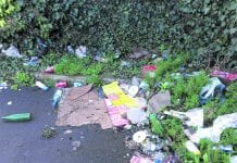 Clondalkin Tidy Towns are calling for action against litter blackspots in the area