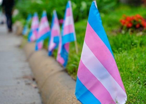 Transgender flags.