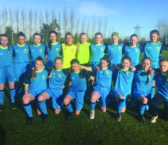 The Leinster Under-15 schoolgirls side